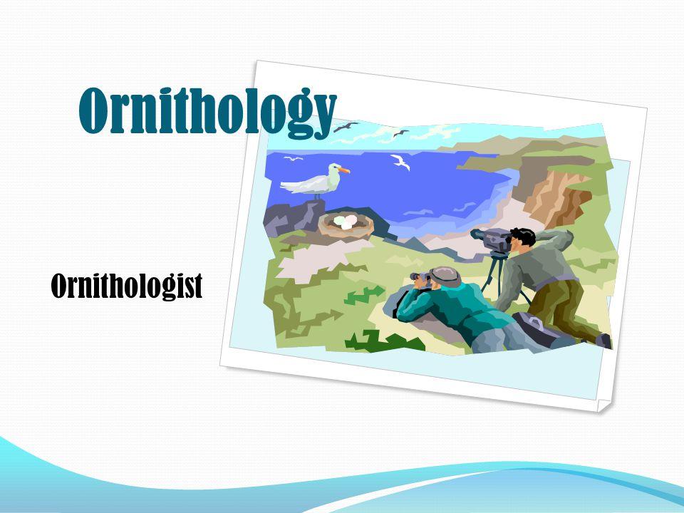 Ornithologist Ornithology