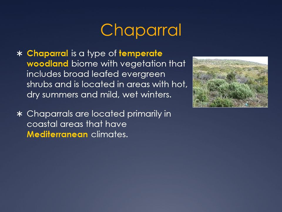 Chaparral  Chaparral is a type of temperate woodland biome with vegetation that includes broad leafed evergreen shrubs and is located in areas with hot, dry summers and mild, wet winters.