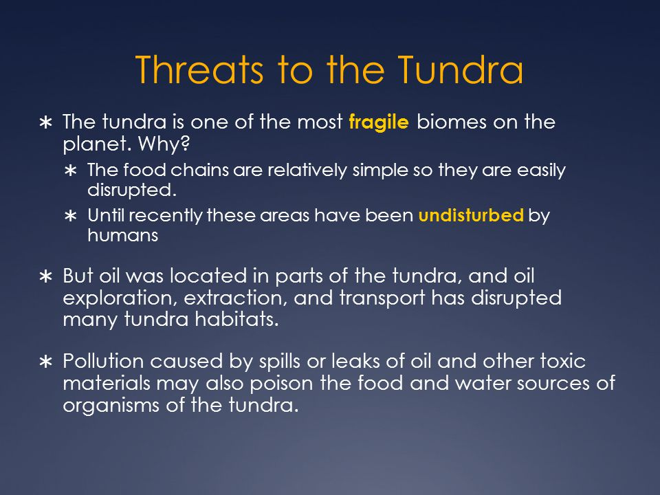 Threats to the Tundra  The tundra is one of the most fragile biomes on the planet.