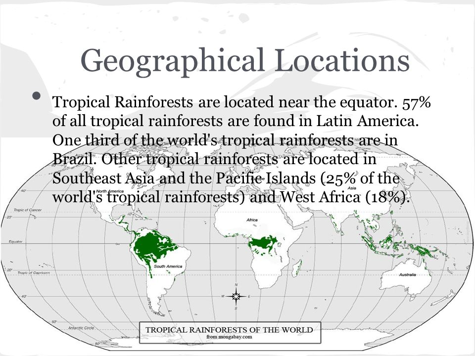 Geographical Locations Tropical Rainforests are located near the equator. 57% of all tropical rainforests are found in Latin America. One third of the