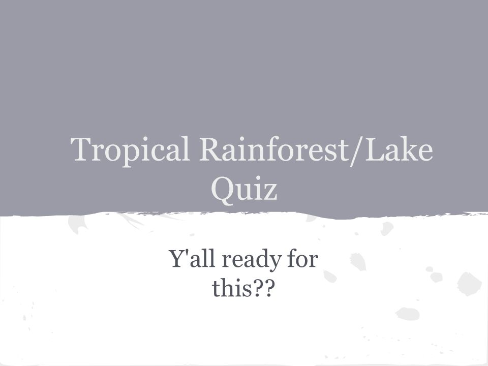 Tropical Rainforest/Lake Quiz Y all ready for this