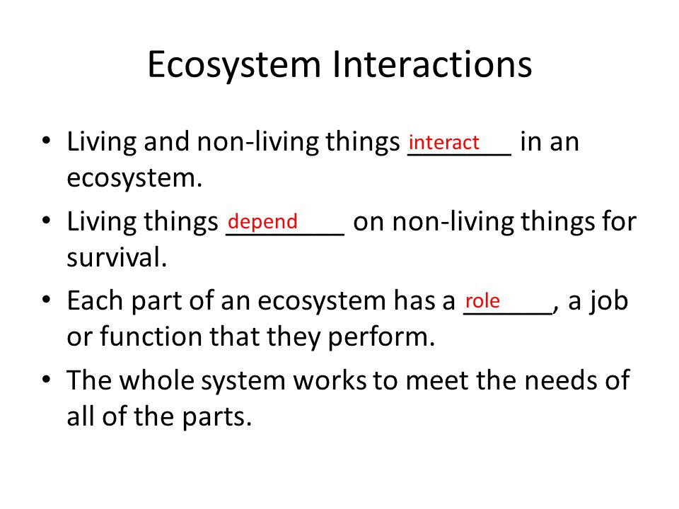 Populations in an Ecosystem ____________ can live and grow only where their needs can be met in the ecosystem.