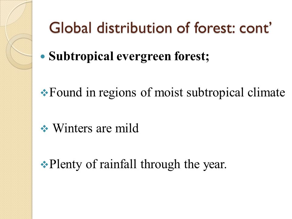 Global distribution of forest: cont' Subtropical evergreen forest;  Found in regions of moist subtropical climate  Winters are mild  Plenty of rain
