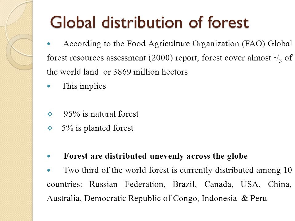 Global distribution of forest According to the Food Agriculture Organization (FAO) Global forest resources assessment (2000) report, forest cover almo