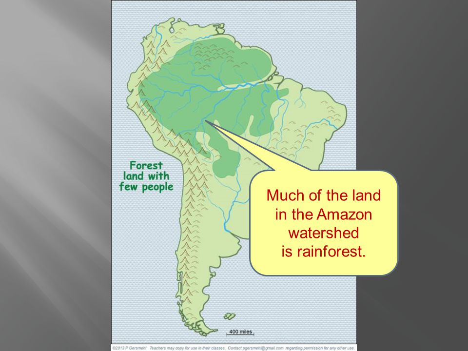 Much of the land in the Amazon watershed is rainforest.