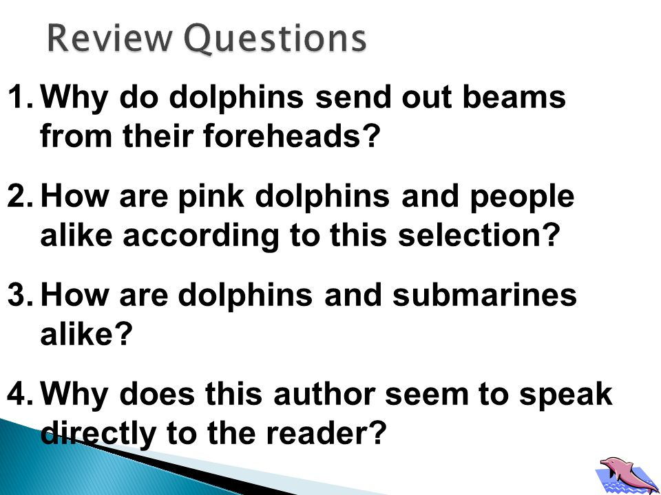 1.How are pink dolphins and ocean dolphins alike.