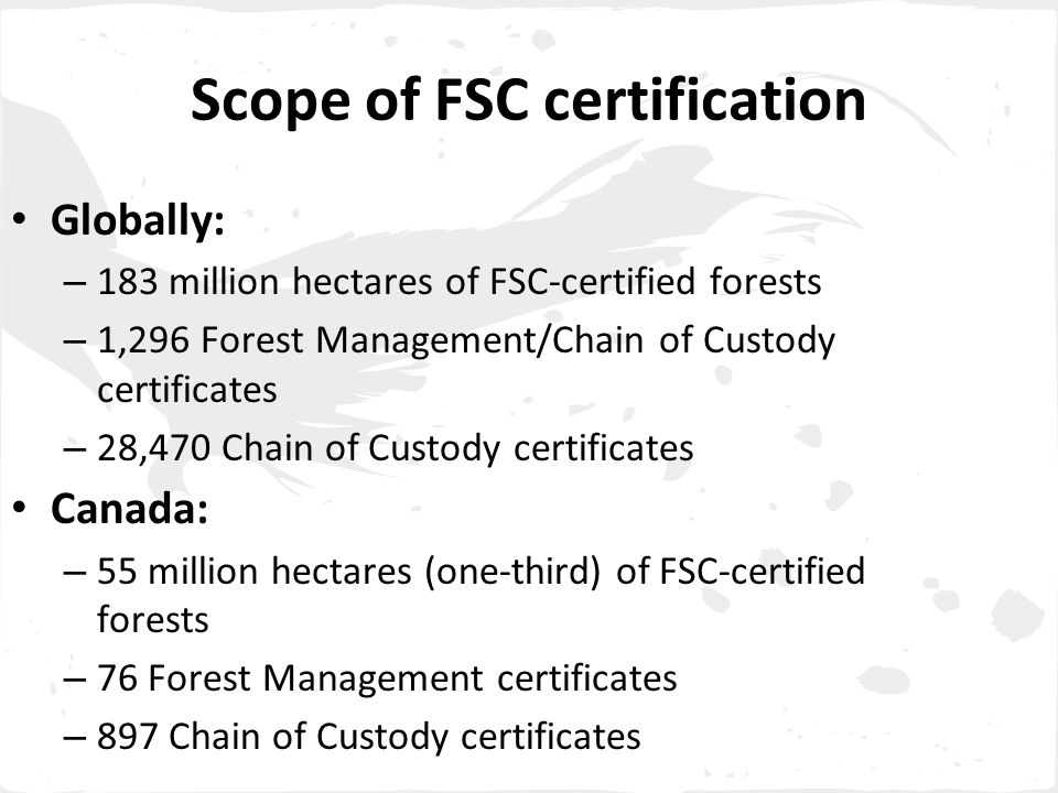 Scope of FSC certification Globally: – 183 million hectares of FSC-certified forests – 1,296 Forest Management/Chain of Custody certificates – 28,470 Chain of Custody certificates Canada: – 55 million hectares (one-third) of FSC-certified forests – 76 Forest Management certificates – 897 Chain of Custody certificates