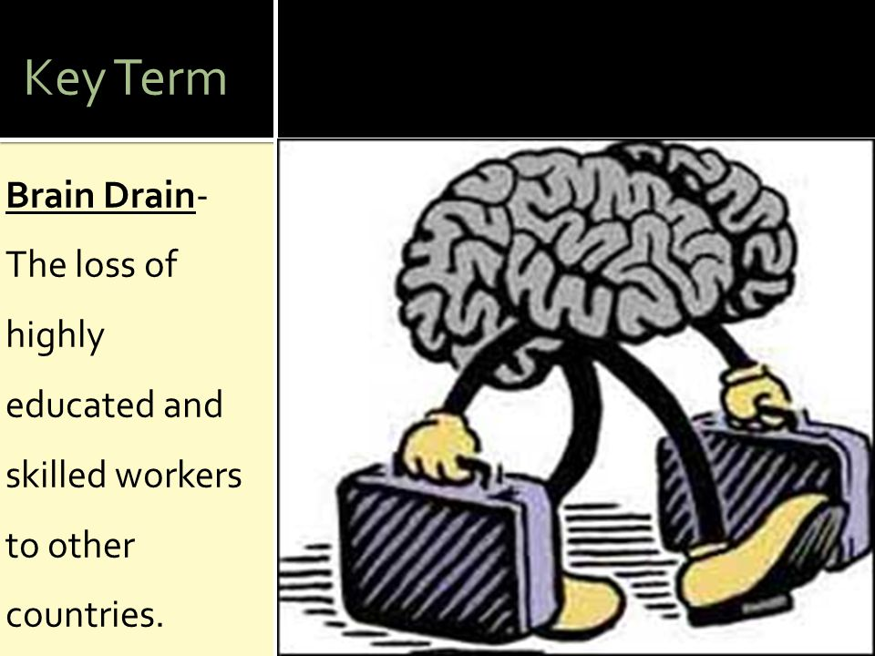 Key Term Brain Drain- The loss of highly educated and skilled workers to other countries.