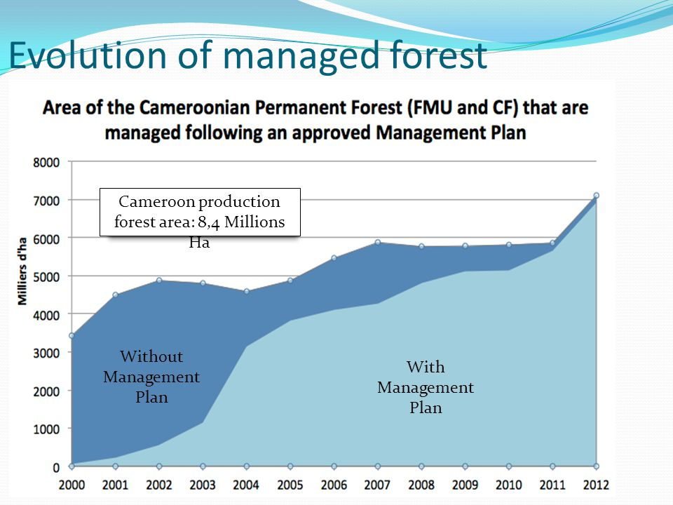 Evolution of managed forest Without Management Plan With Management Plan Cameroon production forest area: 8,4 Millions Ha
