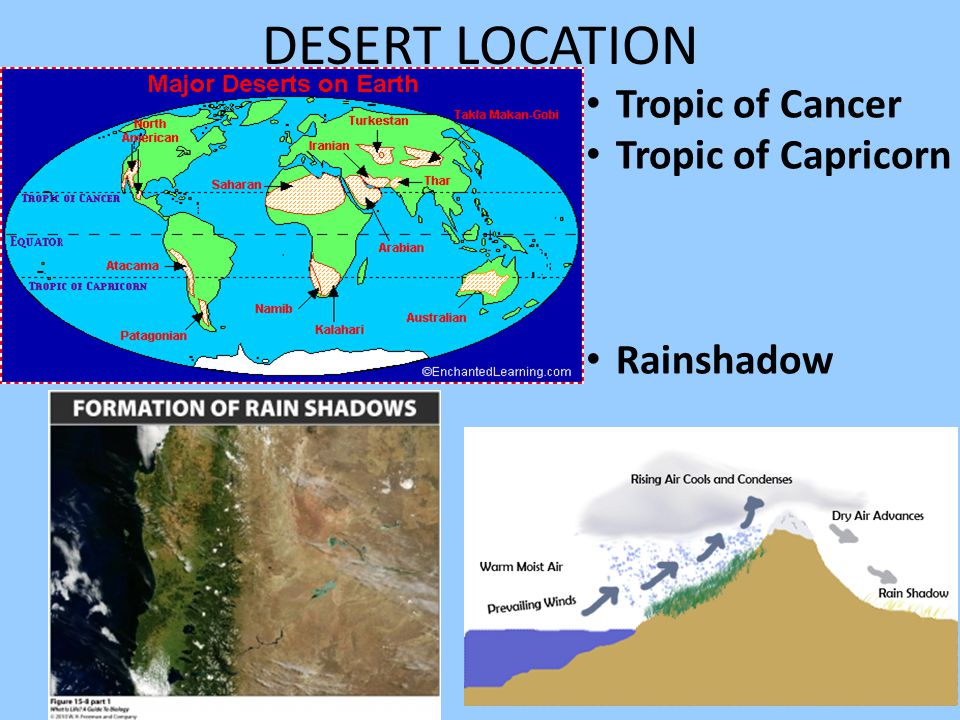 DESERT LOCATION Tropic of Cancer Tropic of Capricorn Rainshadow