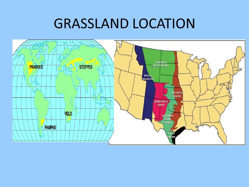 GRASSLAND LOCATION