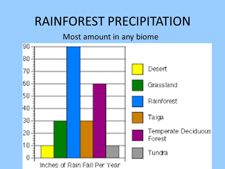 RAINFOREST PRECIPITATION Most amount in any biome