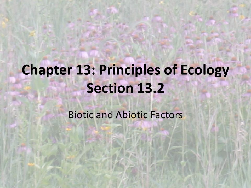 Chapter 13: Principles of Ecology Section 13.2 Biotic and Abiotic Factors