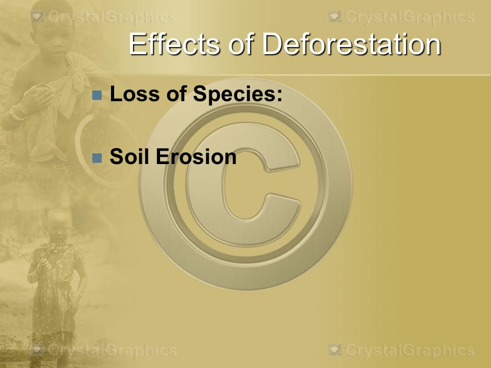 Effects of Deforestation Loss of Species: Soil Erosion