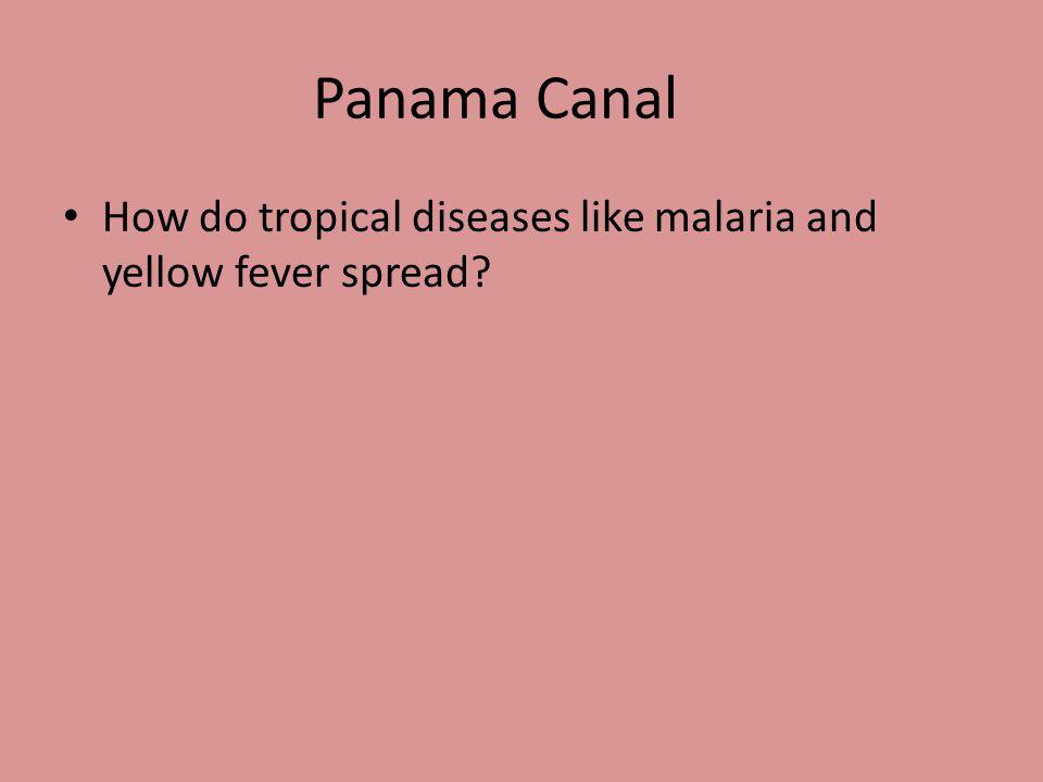 Panama Canal A ship canal that runs through the isthmus of Panama.