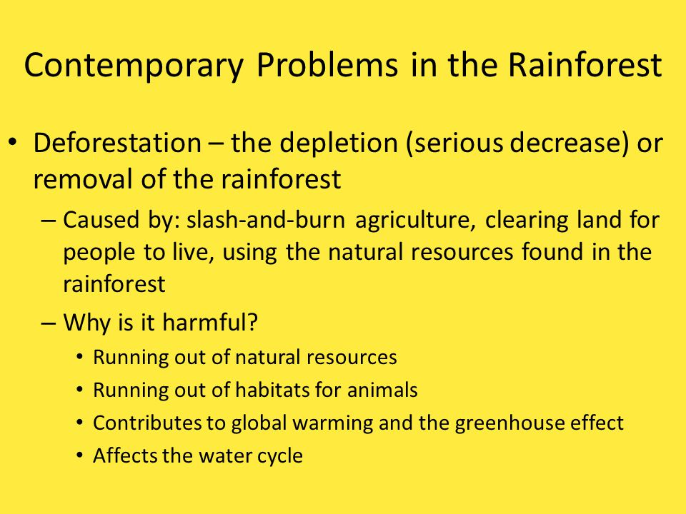 Contemporary Problems in the Rainforest Deforestation – the depletion (serious decrease) or removal of the rainforest – Caused by: slash-and-burn agriculture, clearing land for people to live, using the natural resources found in the rainforest – Why is it harmful.