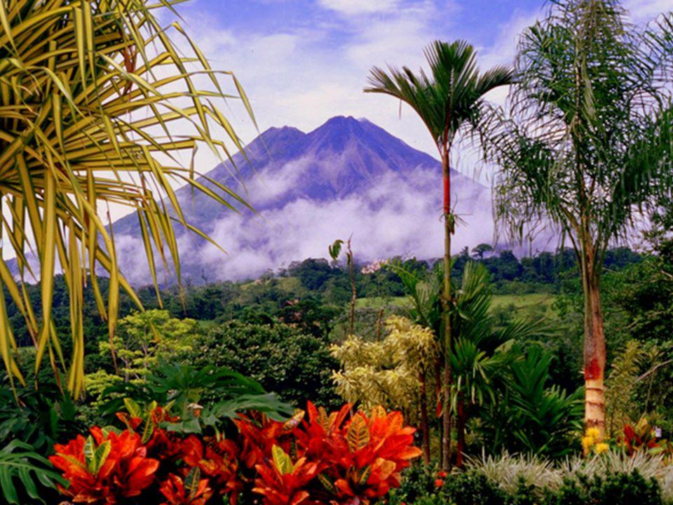 Economics in Central America Agriculture Tourism!!!!