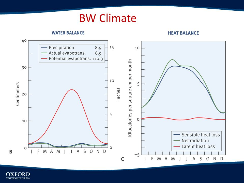 BW Climate