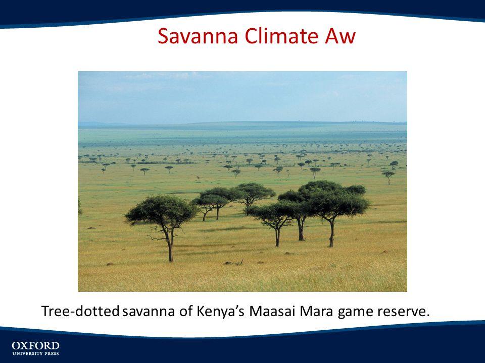 Tree-dotted savanna of Kenya's Maasai Mara game reserve. Savanna Climate Aw