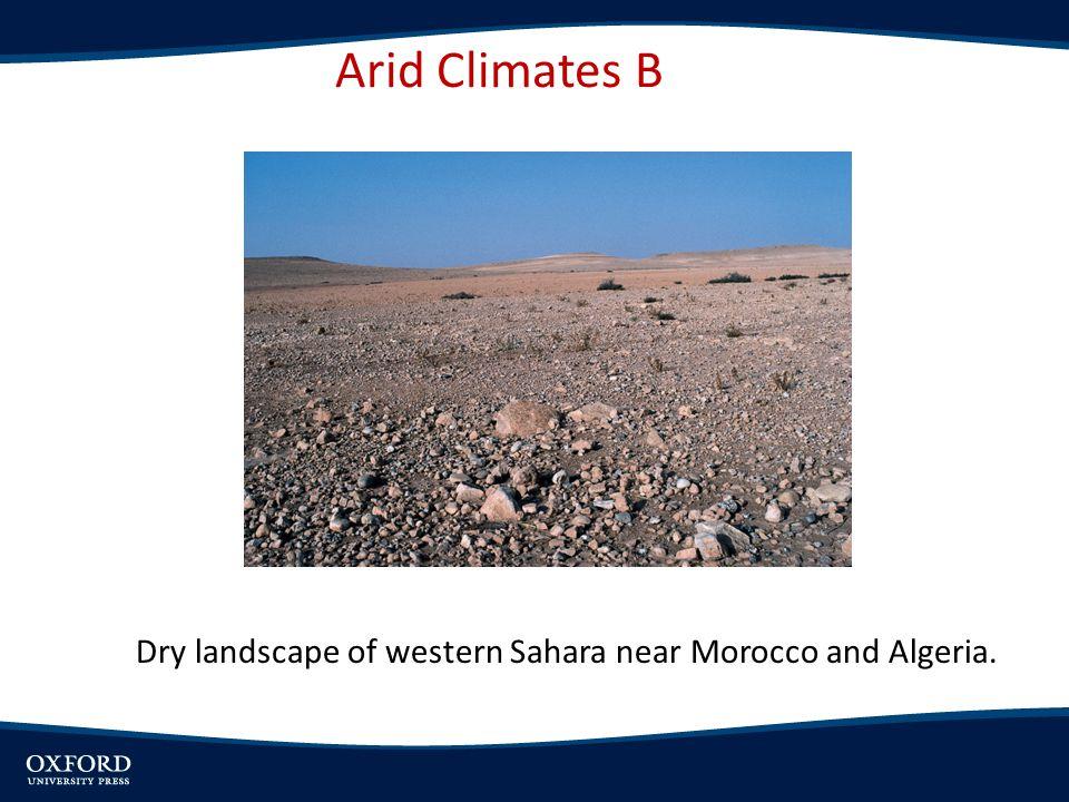Arid Climates B Dry landscape of western Sahara near Morocco and Algeria.