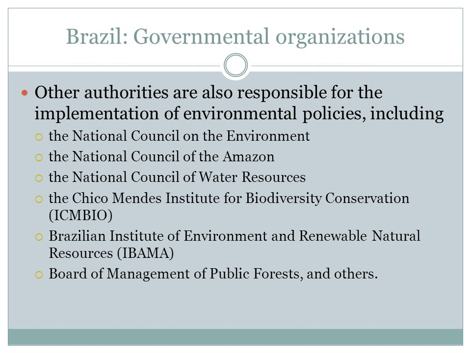 Brazil: Governmental organizations Other authorities are also responsible for the implementation of environmental policies, including  the National Council on the Environment  the National Council of the Amazon  the National Council of Water Resources  the Chico Mendes Institute for Biodiversity Conservation (ICMBIO)  Brazilian Institute of Environment and Renewable Natural Resources (IBAMA)  Board of Management of Public Forests, and others.