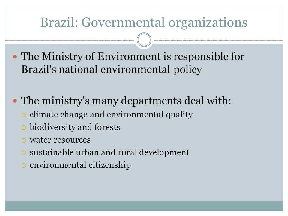 Brazil: Governmental organizations The Ministry of Environment is responsible for Brazil s national environmental policy The ministry s many departments deal with:  climate change and environmental quality  biodiversity and forests  water resources  sustainable urban and rural development  environmental citizenship