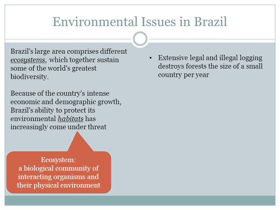 Environmental Issues in Brazil Brazil s large area comprises different ecosystems, which together sustain some of the world s greatest biodiversity.