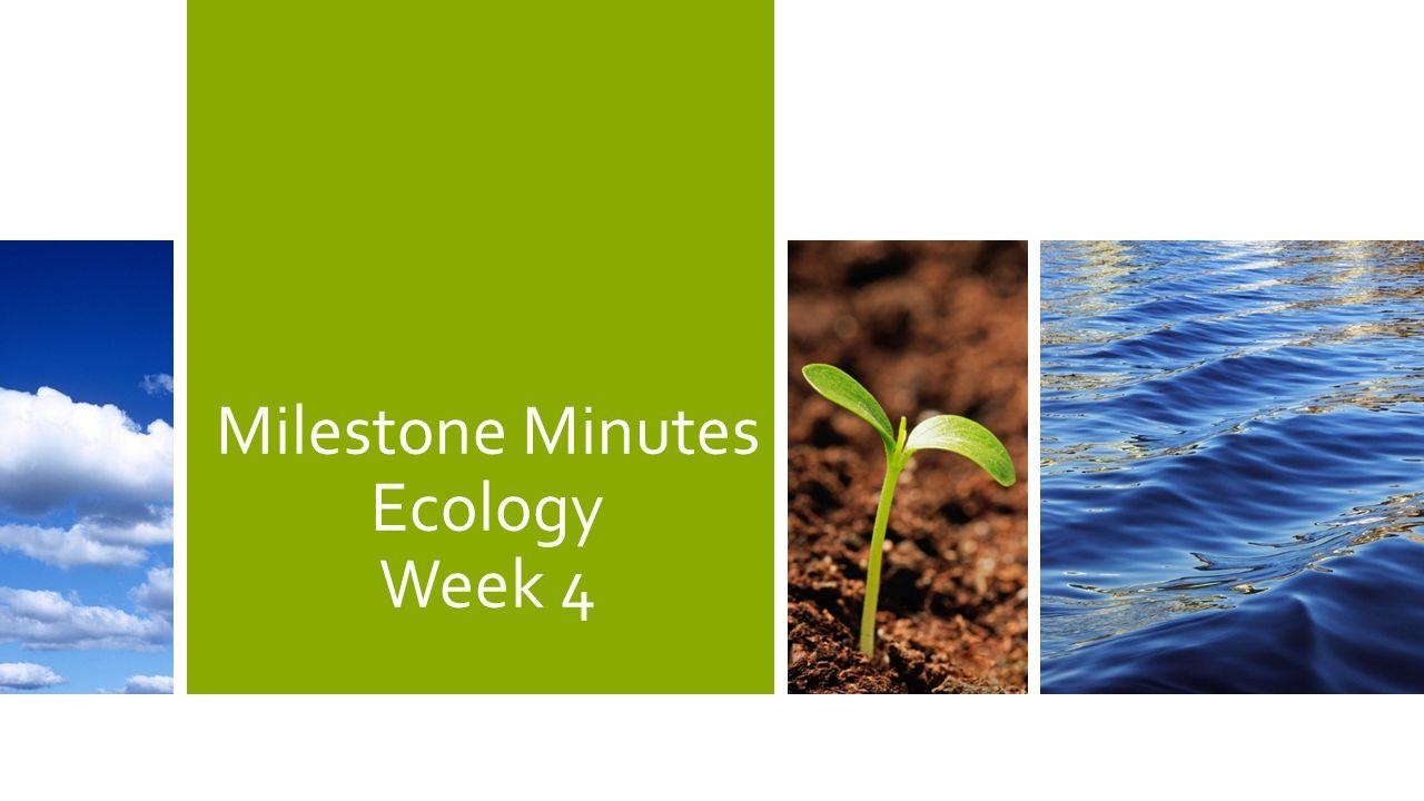Milestone Minutes Ecology Week 4