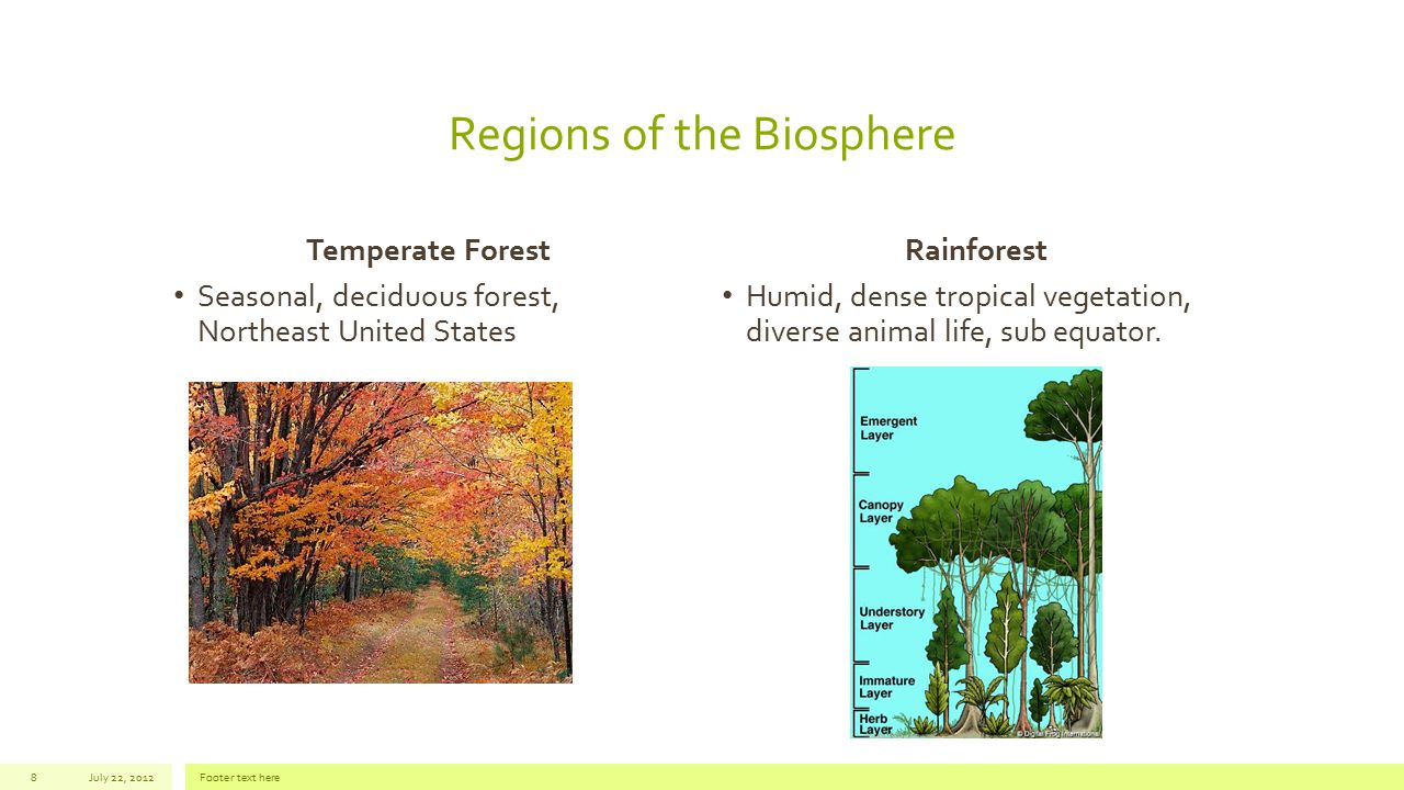 Regions of the Biosphere Temperate Forest Seasonal, deciduous forest, Northeast United States Rainforest Humid, dense tropical vegetation, diverse ani