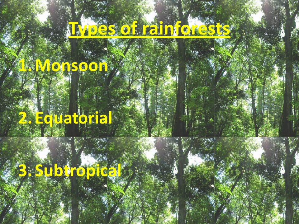 Types of rainforests 1.Monsoon 2.Equatorial 3.Subtropical