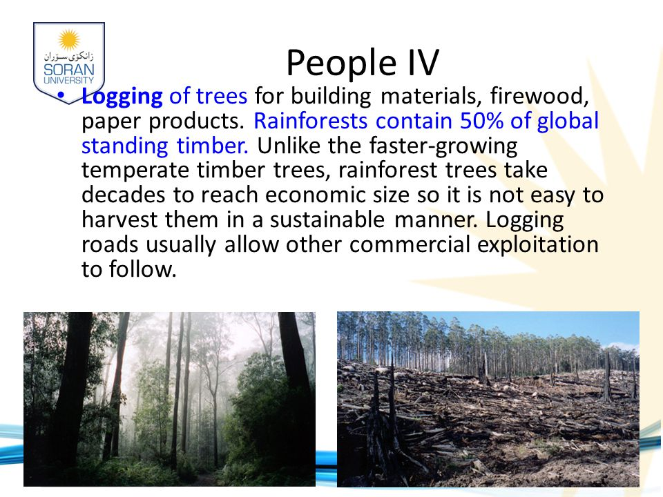 www.soran.edu.iq People IV Logging of trees for building materials, firewood, paper products.