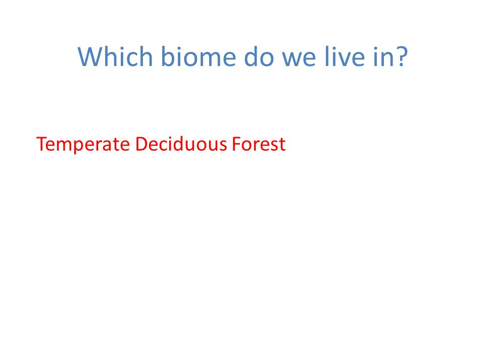 Which biome do we live in? Temperate Deciduous Forest