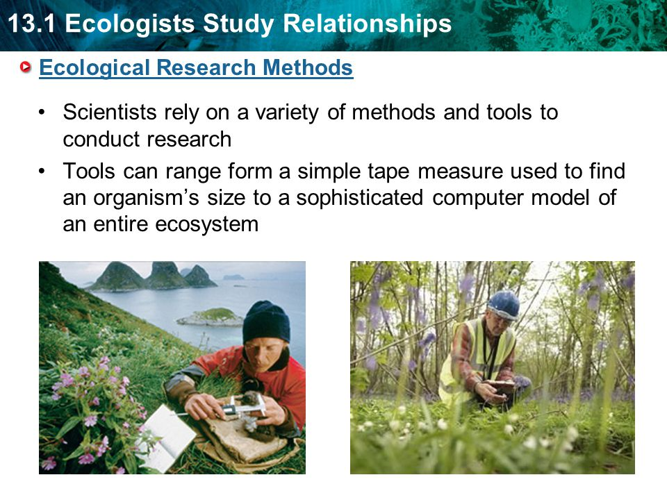 13.1 Ecologists Study Relationships Ecological Research Methods Scientists rely on a variety of methods and tools to conduct research Tools can range