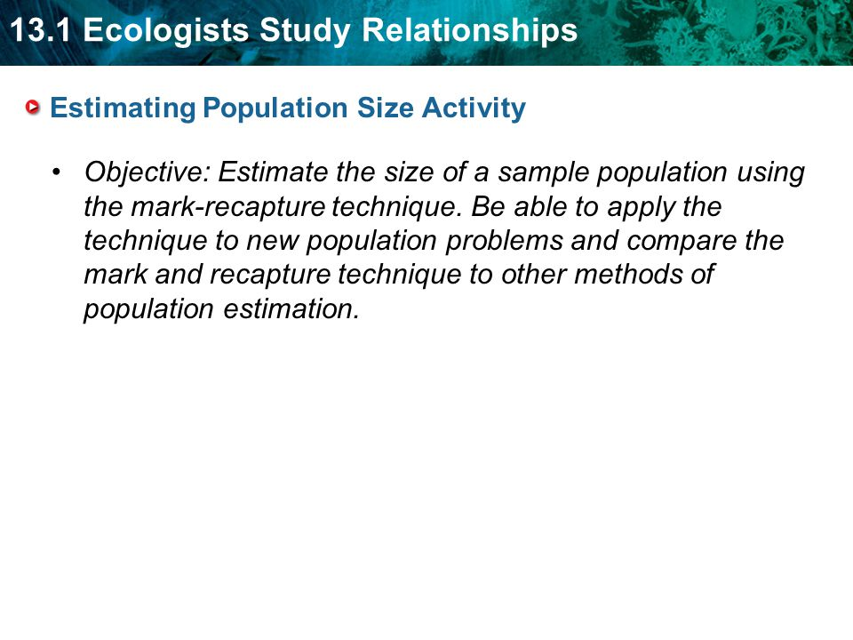13.1 Ecologists Study Relationships Estimating Population Size Activity Objective: Estimate the size of a sample population using the mark-recapture t