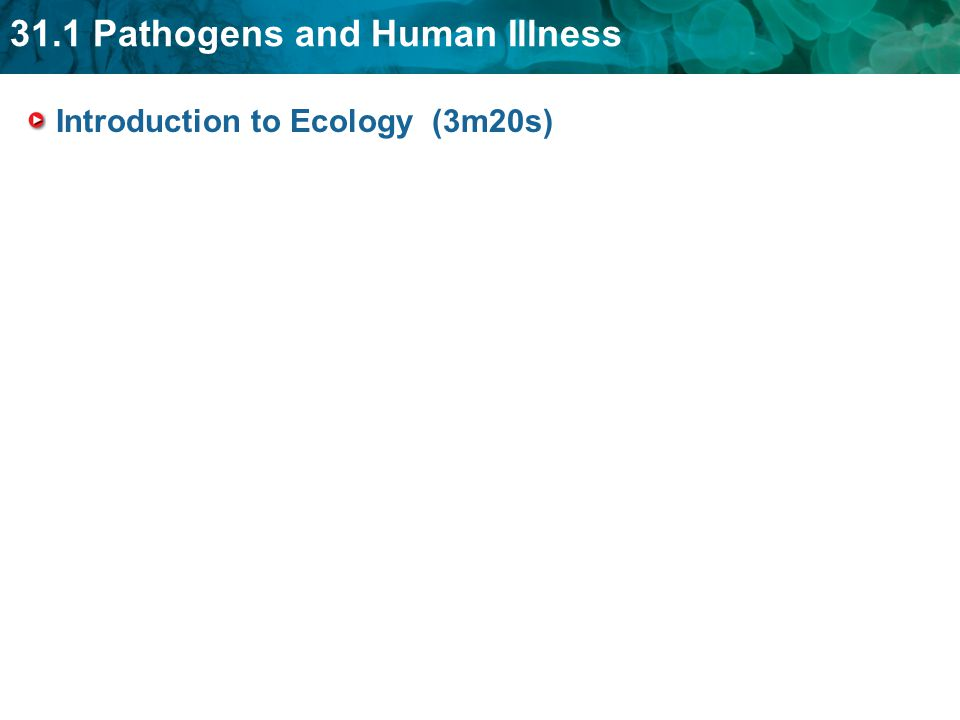 31.1 Pathogens and Human Illness Introduction to Ecology (3m20s)