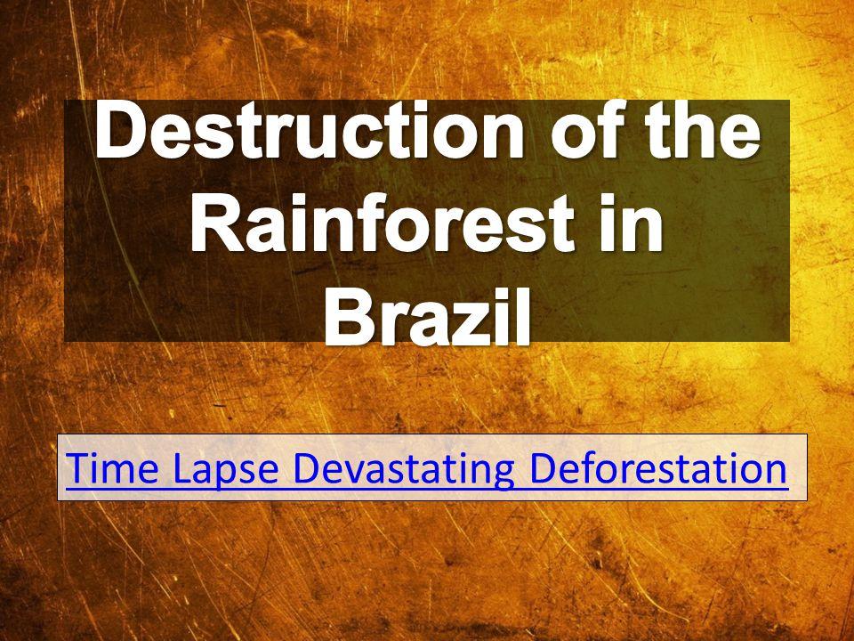 Time Lapse Devastating Deforestation
