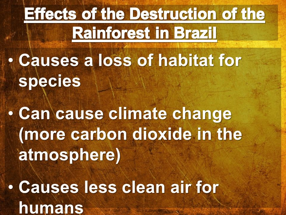 Causes a loss of habitat for speciesCauses a loss of habitat for species Can cause climate change (more carbon dioxide in the atmosphere)Can cause cli