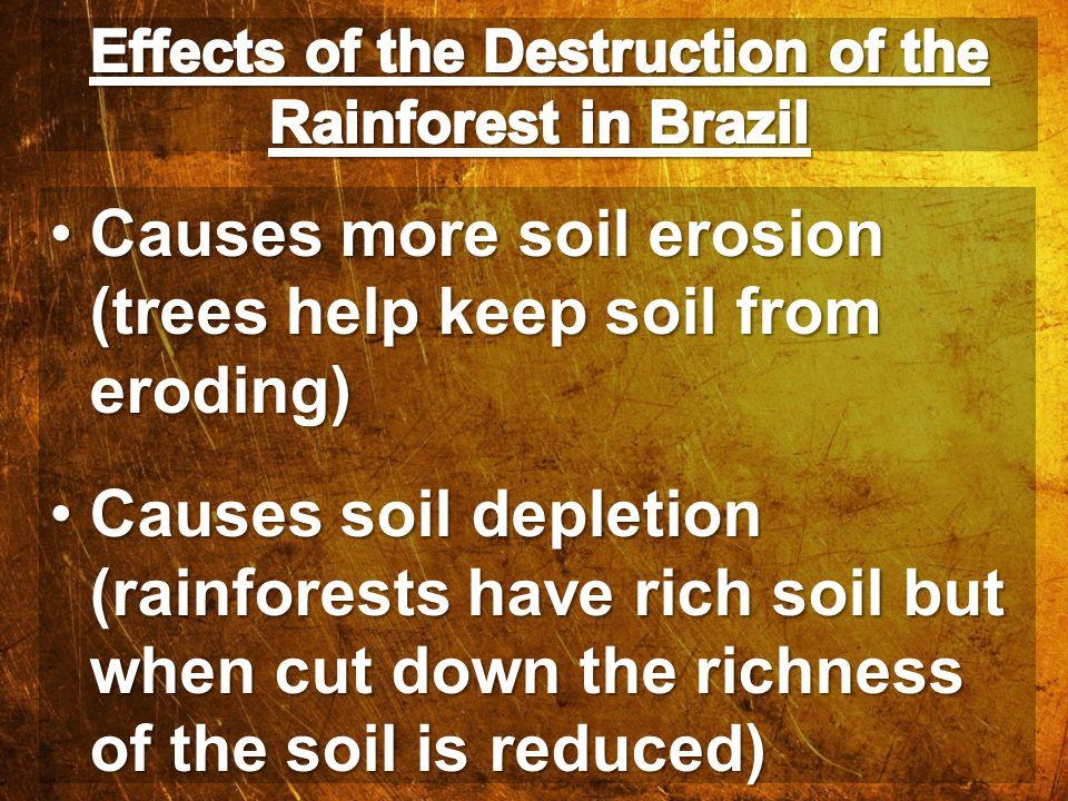 Causes more soil erosion (trees help keep soil from eroding)Causes more soil erosion (trees help keep soil from eroding) Causes soil depletion (rainfo