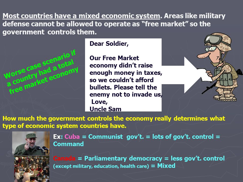 "Most countries have a mixed economic system. Areas like military defense cannot be allowed to operate as ""free market"" so the government controls them"