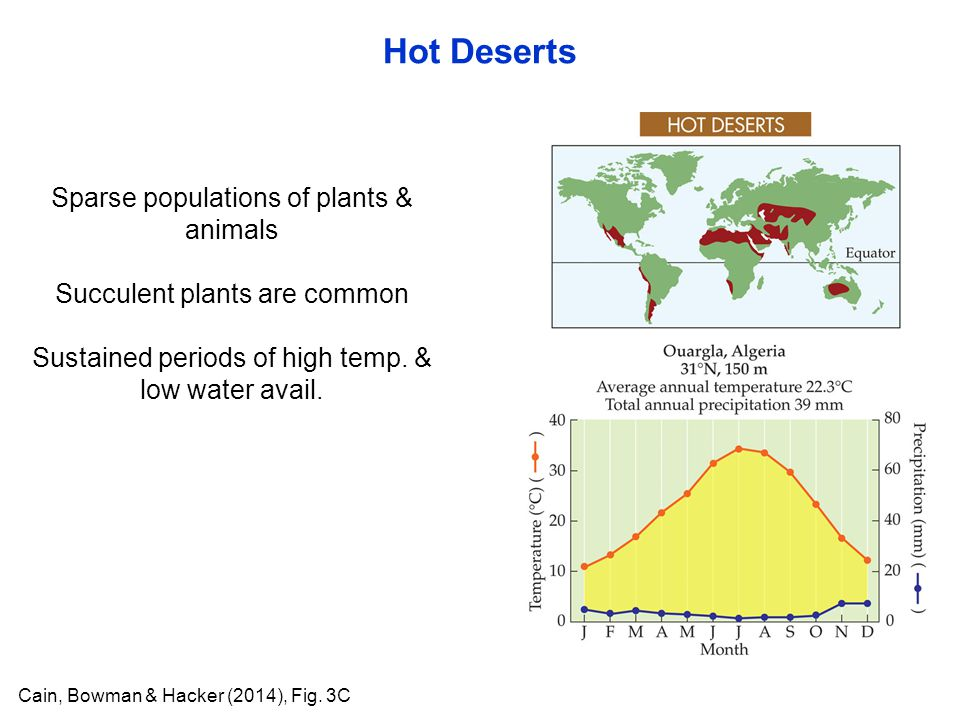 Hot Deserts Cain, Bowman & Hacker (2014), Fig. 3C Sparse populations of plants & animals Succulent plants are common Sustained periods of high temp. &