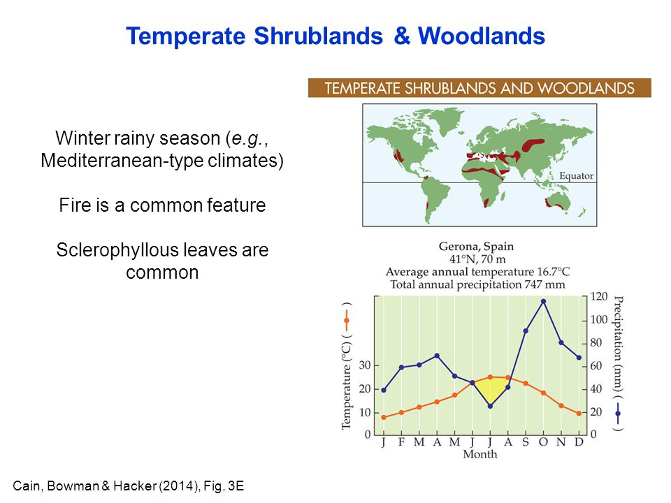 Temperate Shrublands & Woodlands Cain, Bowman & Hacker (2014), Fig. 3E Winter rainy season (e.g., Mediterranean-type climates) Fire is a common featur