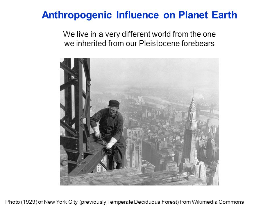 We live in a very different world from the one we inherited from our Pleistocene forebears Anthropogenic Influence on Planet Earth Photo (1929) of New York City (previously Temperate Deciduous Forest) from Wikimedia Commons