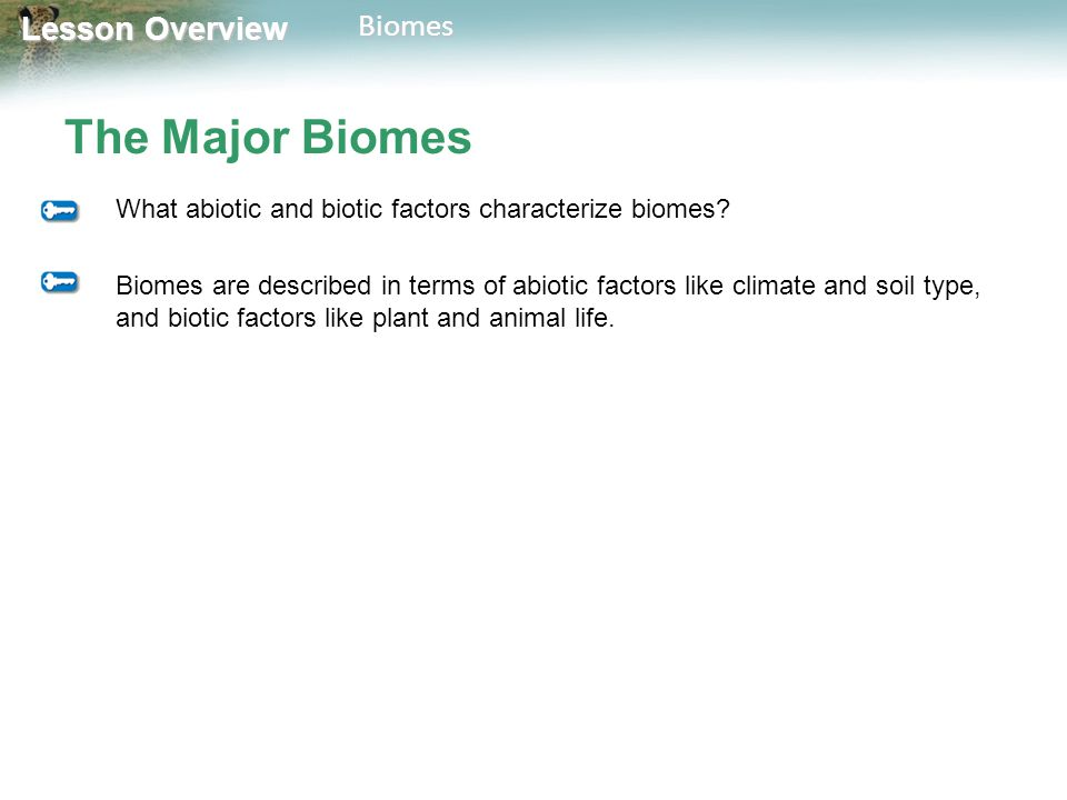 Lesson Overview Lesson OverviewBiomes The Major Biomes What abiotic and biotic factors characterize biomes? Biomes are described in terms of abiotic f