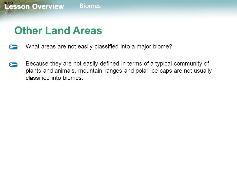 Lesson Overview Lesson OverviewBiomes Other Land Areas What areas are not easily classified into a major biome? Because they are not easily defined in