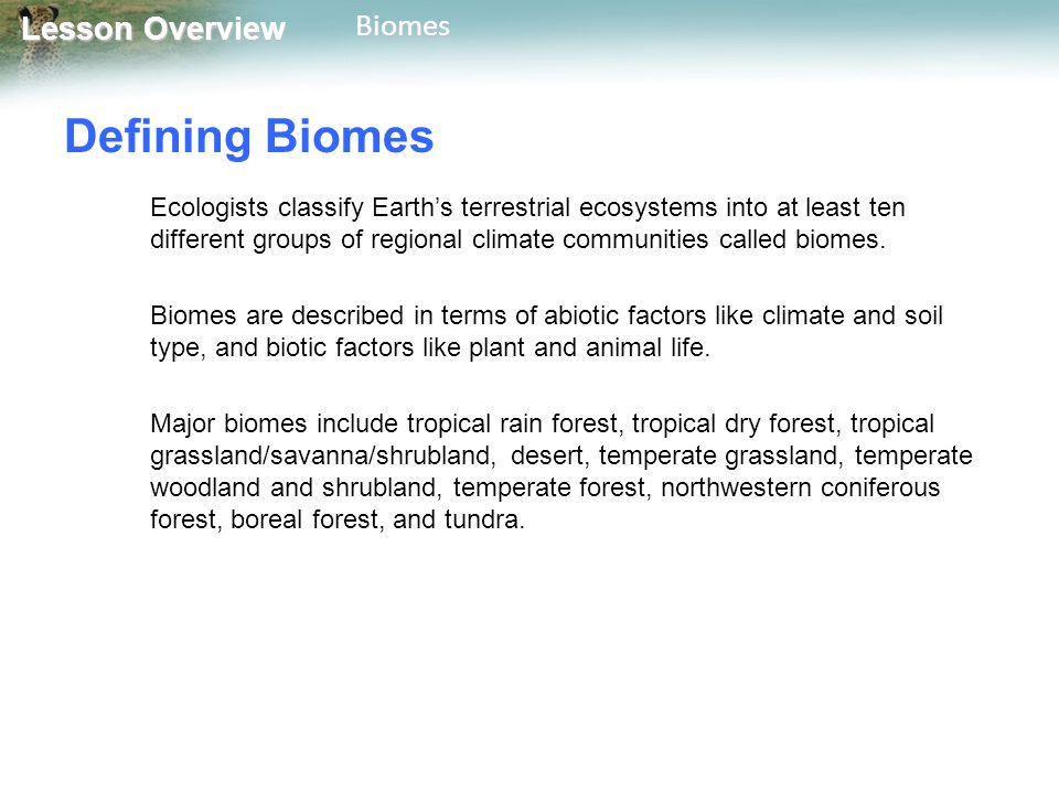 Lesson Overview Lesson OverviewBiomes Defining Biomes Ecologists classify Earth's terrestrial ecosystems into at least ten different groups of regiona