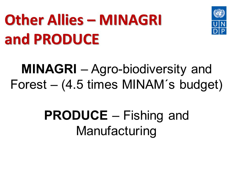Other Allies – MINAGRI and PRODUCE MINAGRI – Agro-biodiversity and Forest – (4.5 times MINAM´s budget) PRODUCE – Fishing and Manufacturing