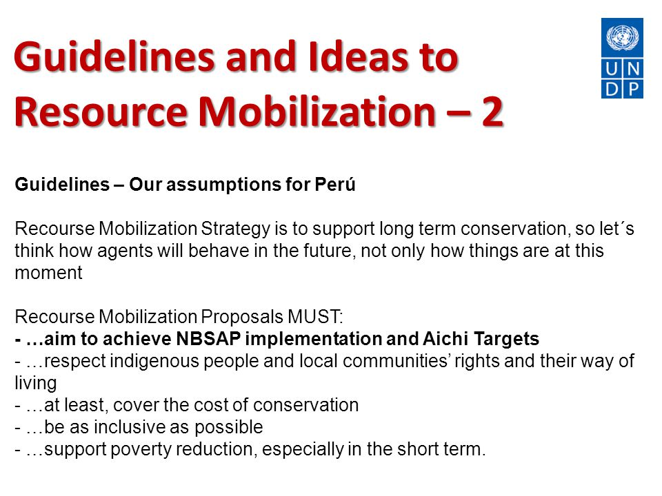 Guidelines and Ideas to Resource Mobilization – 2 Guidelines – Our assumptions for Perú Recourse Mobilization Strategy is to support long term conservation, so let´s think how agents will behave in the future, not only how things are at this moment Recourse Mobilization Proposals MUST: - …aim to achieve NBSAP implementation and Aichi Targets - …respect indigenous people and local communities' rights and their way of living - …at least, cover the cost of conservation - …be as inclusive as possible - …support poverty reduction, especially in the short term.