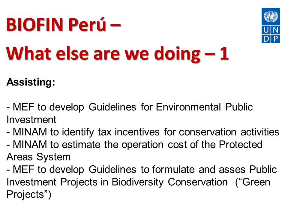 BIOFIN Perú – What else are we doing – 1 Assisting: - MEF to develop Guidelines for Environmental Public Investment - MINAM to identify tax incentives for conservation activities - MINAM to estimate the operation cost of the Protected Areas System - MEF to develop Guidelines to formulate and asses Public Investment Projects in Biodiversity Conservation ( Green Projects )