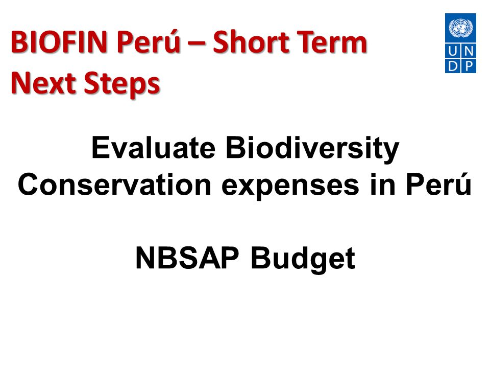 BIOFIN Perú – Short Term Next Steps Evaluate Biodiversity Conservation expenses in Perú NBSAP Budget