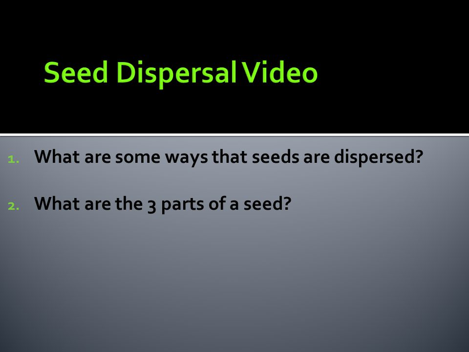 1. What are some ways that seeds are dispersed? 2. What are the 3 parts of a seed?